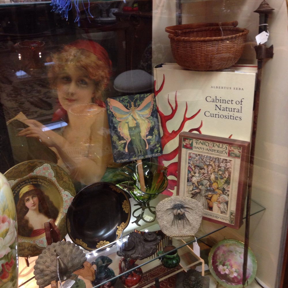 The Book Cove & Pawling Antiques, Pawling NY (4/6)